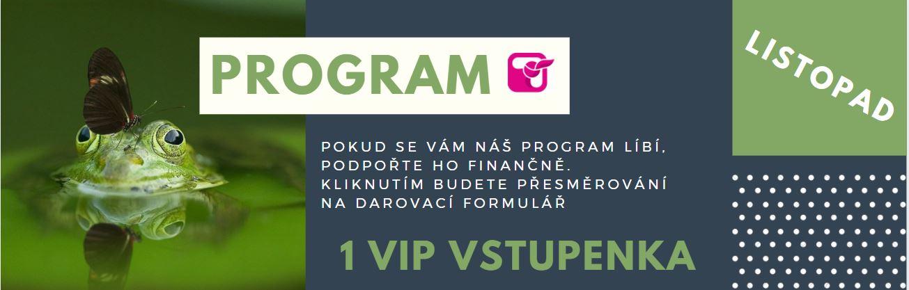 VIP Vstupenka